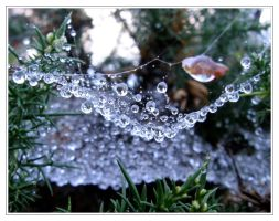 Droplets by IsaFortyThirty1