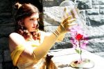 Princess Belle Cosplay - The Enchanted Rose by SparrowsSongCosplay