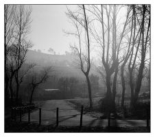 Morning Road by rATRIJS