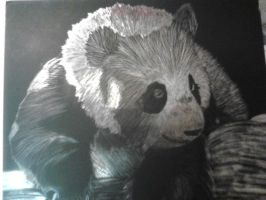 Scratchboard: Panda Bear by beauty-to-pain