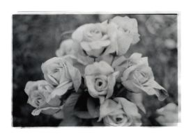 plastic flowers for the dead by castitas