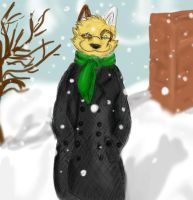 Winter Time by milleniumocarina