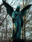 Grave Angel - Old Cemetery, Germany 2017 by AngelOfDarkness089