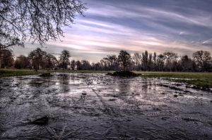 Icy Puddle by johnwaymont