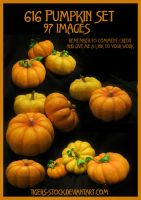 616 Pumpkin Set by Tigers-stock
