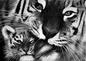 Tiger and cub by kayleighmc