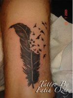 feather tattoo by Tattooforever