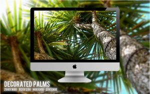 Decorated Palms by nathanthenerd