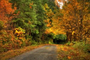 Autumn Down the North Fork by Telestic