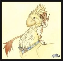 Chocobo and Moomba by Astrocat