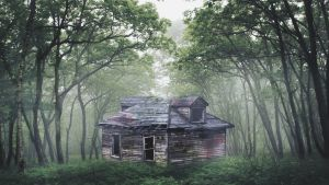 Creepy House Wallpaper by Mihil