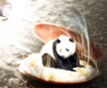 Birth of... Panda?? by Jinnger