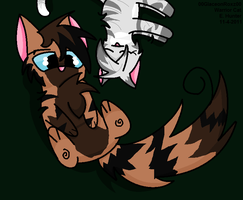 Hawkfrost and Ivypool by 00GlaceonRoxz00