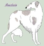 Anastasia by Windhaven-Kennel
