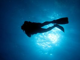 Diver by Dracofemi