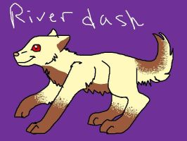 Riverdash. Adoptables entry by AutumLeavesofFall