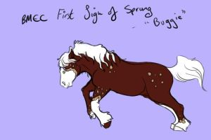 BMEC First Sign of Spring by JEAikman