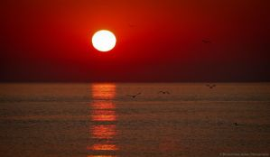 Black Sea Sunrise by ScorpionEntity