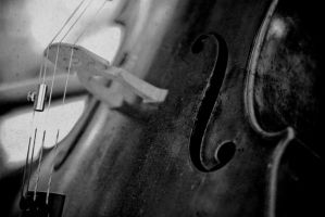 Cello by knofla