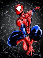 SPIDER-MAN by CThompsonArt
