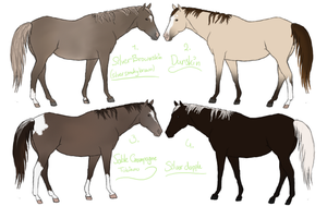 Real Horse Adopts 3 CLOSED by ItsDirrtyArt