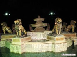 Mascara's Eight Lions by mascara84