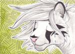 ACEO - Tinera by Ponyta3