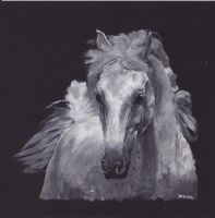 White Horse by bwcopy