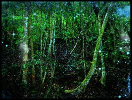 Fairy Land Forest Night Stock by RavenMaddArtwork