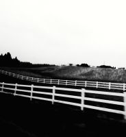 In The Land of Picket Fences by XxMissesNumberNEINxX