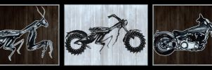 two wheelers and insect death dealers by jshoemake15