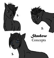 Character Concepts -- Shadow by ShadowRainLion