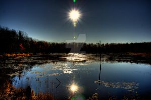 HDR Autumn Swamp 2 by Nebey