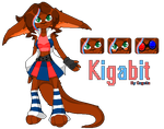 Kigabit Reference Sheet by Cogetta