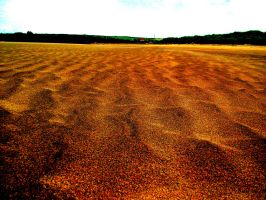 Martian landscape (if you ignore the background) by D1scipl31974
