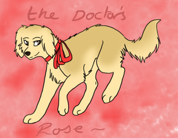 .::The Doctors Rose::. by Ask-11thDoctorDog