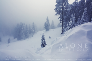 Alone In The Cold by KovoWolf