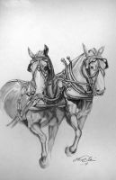 Draft Horses by Midnight-Sun-Art