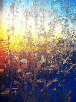 Through the glass at sunrise by cocobolo