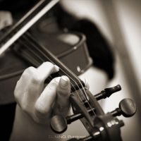Violin III by Nohition
