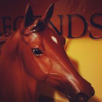 Phar Lap - Breyer by CrocodileRawk