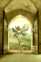 Fairie At The Window I by VisualPoetress