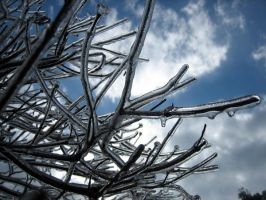 ice storm 3 by heatherspettals