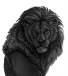 lion by Brevis--art