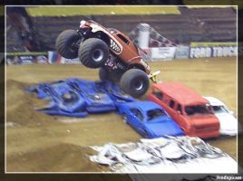 Monster Mutt Takes Flight by jondapicam