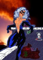 Black Cat  colab by CDL113