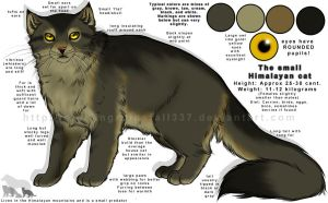 Lesser Himalayan Mountin Cat (reference) by NinjaKato