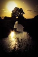 evening light by lindaatje