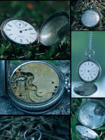 1889 American Waltham Pocket Watch by TeamMinato