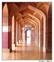 Shahjahan Mosque -VI by aabbas